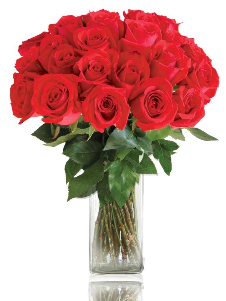 Comprar rosas rojas online por san valent n el draguito - Como secar un ramo de rosas ...