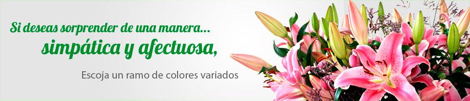 Arreglo Floral con Strelitzias.