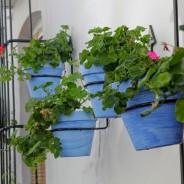 Reciclar Macetas de Barro para Primavera.