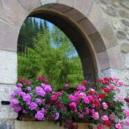 El Encanto de una Ventana con Flores.